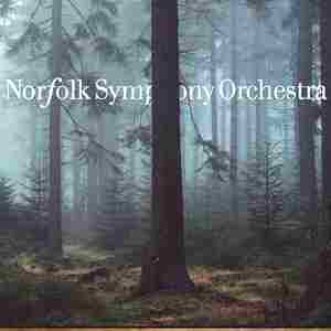 Norfolk Symphony Orchestra - Into The Woods